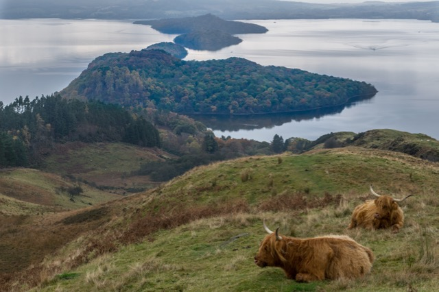 the Best Scenery in Scotland | Loch Lomond & The Trossachs National Park.
